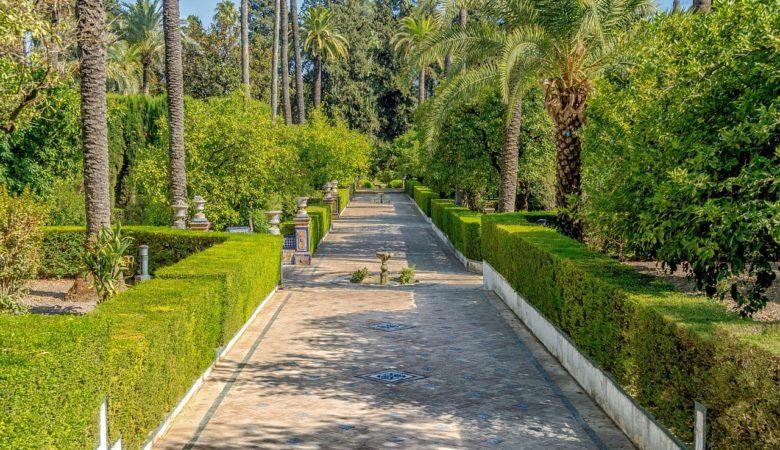 seville alcazar jardin
